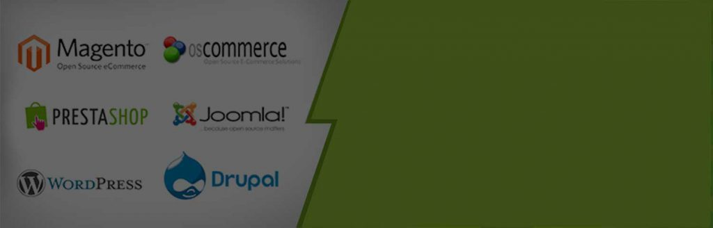 Web Design Company in Uttara